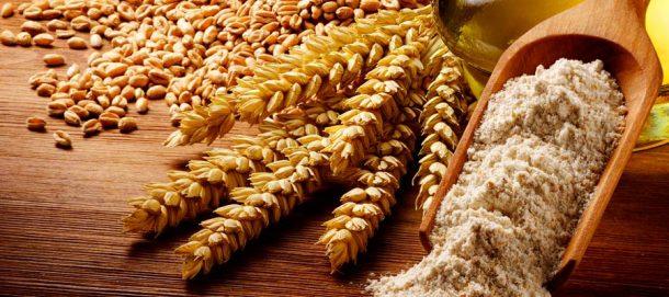 Caractéristiques farine de blé