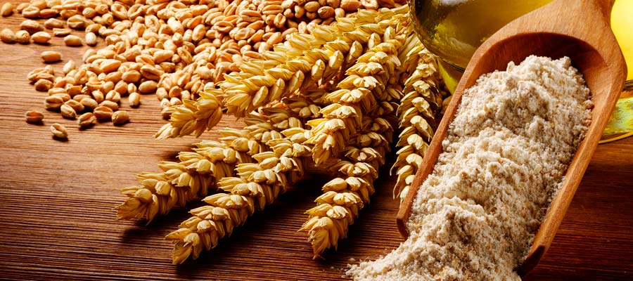 Caratteristiche farina di grano